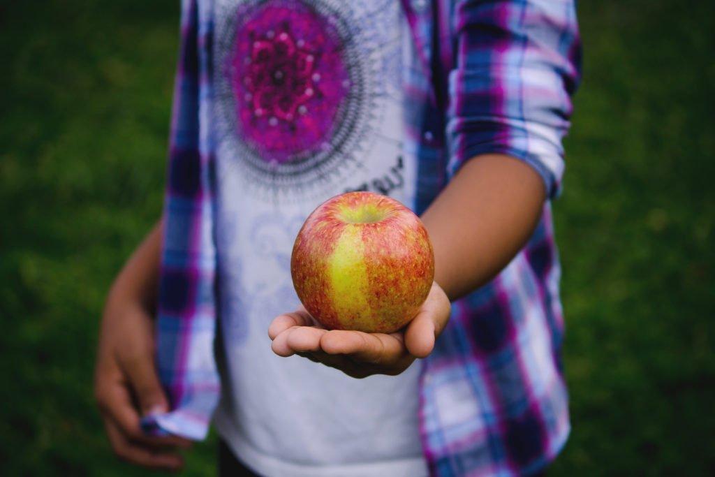 backpacker picking apples for travel cash