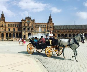 horse carriage ride in Spain